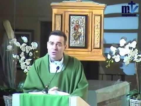 MI RINCON ESPIRITUAL: Evangelio y Homilía de hoy miércoles 29 de noviemb...