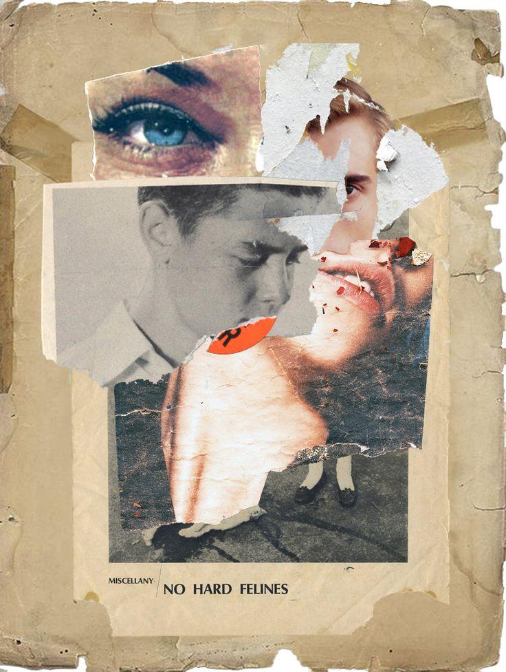 Collage HARD FELINES 2013 Waldemar Strempler Tumblr