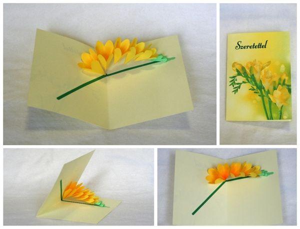 Flower pop up cards by Stephani Imola, via Behance