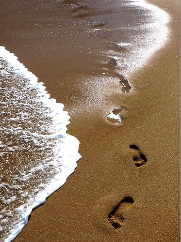 Feet in the sand, ears filled with the sounds of the ocean.
