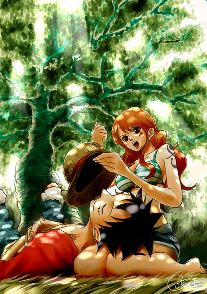 Luffy and Nami this is really well done. Really similar to the original style XD