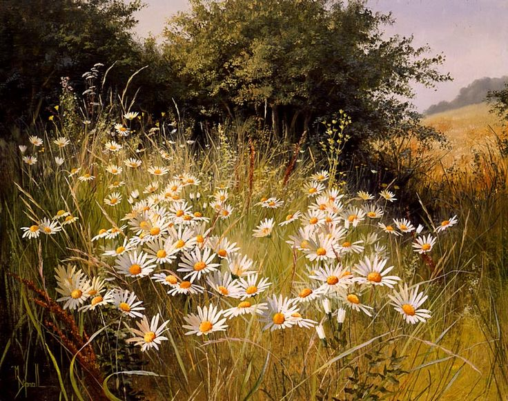 Mary Dipnall Original Paintings Google Search Mary