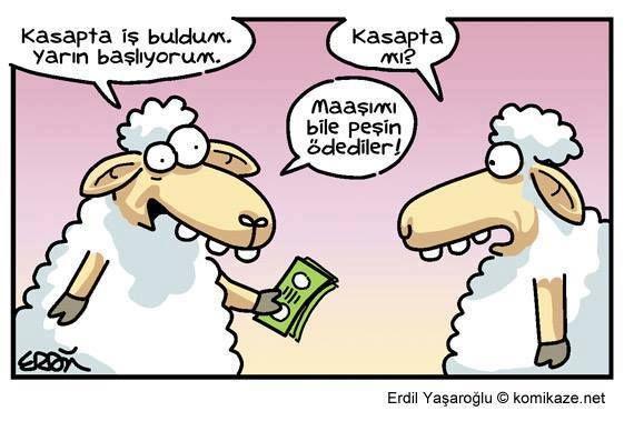 - Kasapta iş buldum. Yarın başlıyorum.  + Kasapta mı?  - Maaşımı bile peşin ödediler!  #karikatür #mizah #matrak #komik #espri