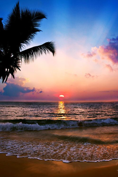 Sunset on a tropical beach...