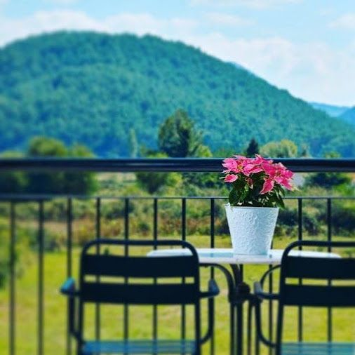 It 's spring time! Go outside and enjoy the life!  #springday #sunnyday #sunnylife #blooming_petals #greennature #aarhotel #ioannina #Greece  www.aarhotel.gr