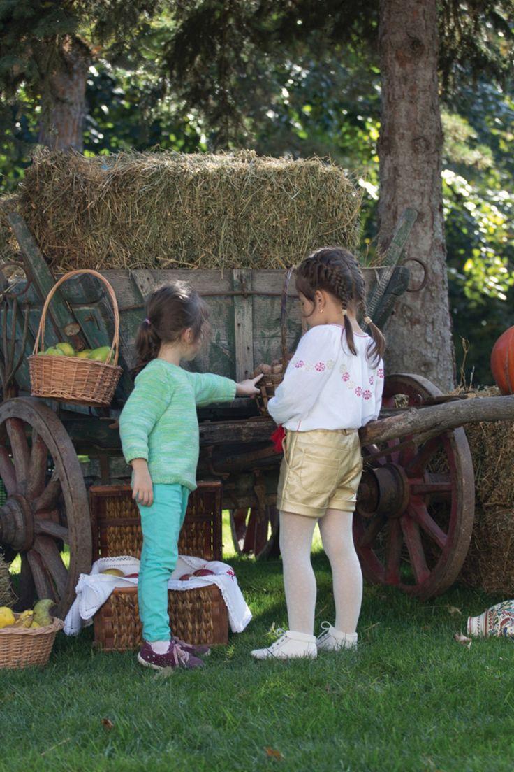 #harvestday