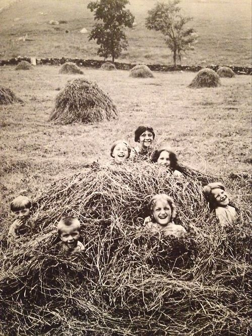 A group of children in the middle of a haystack in a field in Pawling, New York, early 20th century (From This Fabulous Century: 1900-1910, scanned by weirdvintage)