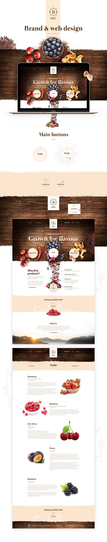 Brix brand and web design on Web Design Served
