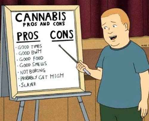 "Marijuana isn't such a bad thing. | 16 Life Lessons Learned From ""King Of The Hill"""