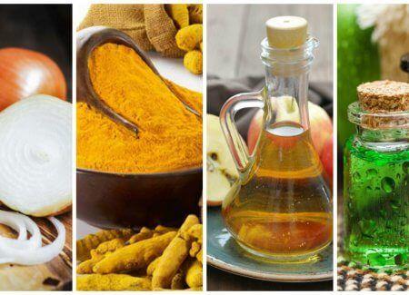 8 formas naturales de hacerle frente a las infecciones bacterianas