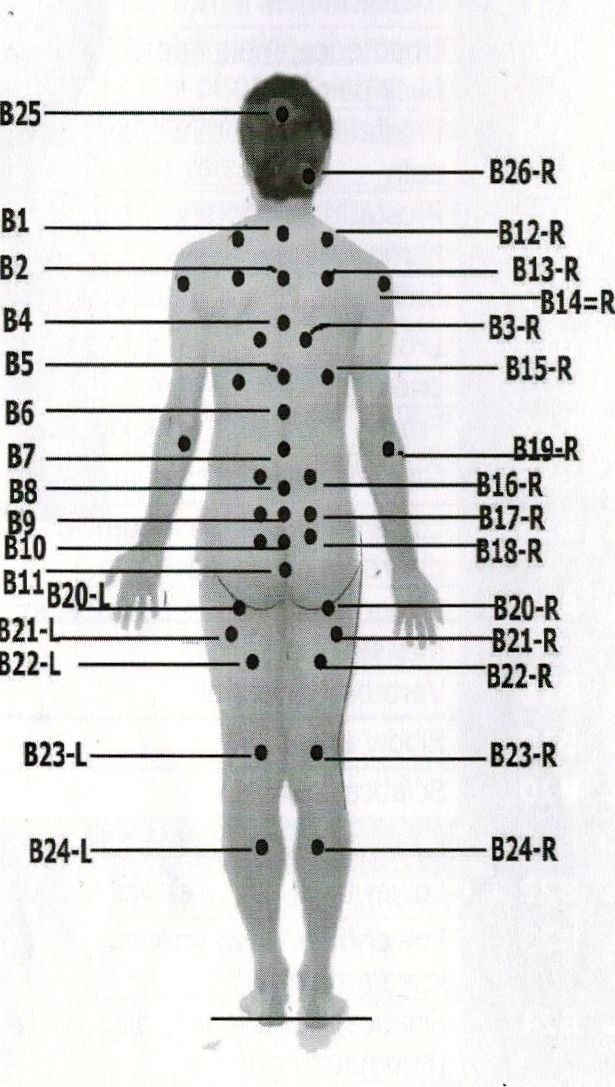 Chinese cupping point from DR, Tamer's Cupping Therapy encyclopedia