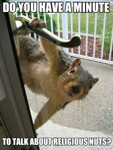 LOL look, it's the Jehovah's Witnesses again! Here kitty kitty...