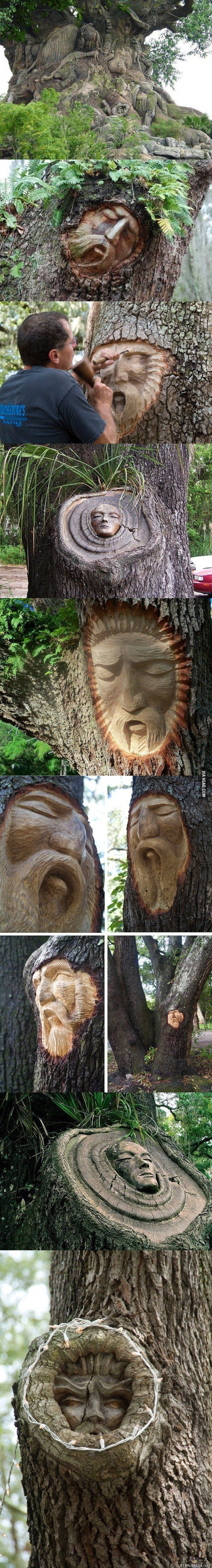 Carving a living tree