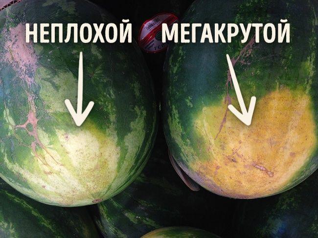 Как выбрать арбуз 🍉