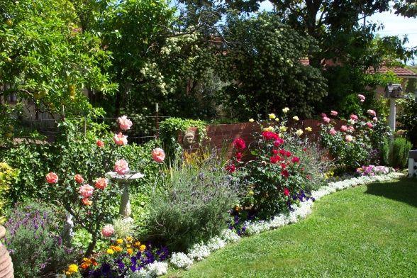 ideas cottage garden cottage garden my roses gardens design