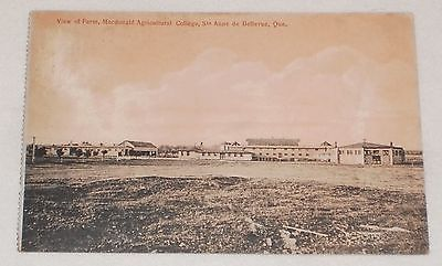 lot-of-3-Macdonald-Agricultural-College-Ste-Anne-de-Bellevue-Quebec-postcards