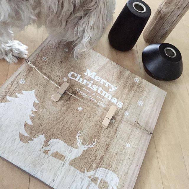 #christmascards 🐭🎅🏼🎄⚪️🔴 #diy idee: eine Leinwand oder Holzplatte nehmen, beliebig beschriften oder anmalen, Kordel mit Wäscheklammern anbringen und fertig ist der #weihnachtsgruß.... fast fertig ... jetzt fehlt noch ein zuckersüßes Foto mit der kleinen Maus. Davon dann ein Foto machen und über #cewe #dm  fotopostkarten drucken lassen. Diese Tafel gibt's übrigens auch schon fertig zukaufen bei @sarahandsue. #sammygefälltsauch #christmas #weihnachten #holz #fotorahmen #fotos #idee #sammy…