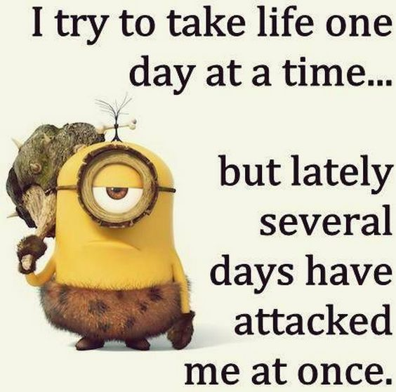 35 Very Funny Minion Quotes #Minions #Funny