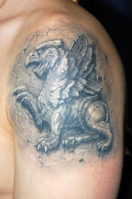 Stone griffin tattoo on arm - Tattooimages.biz
