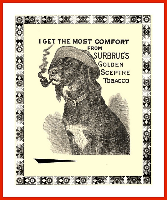 1894 Advertisement Happy Dog Smoking SURBURG'S Tobacco by carlylehold, via Flickr