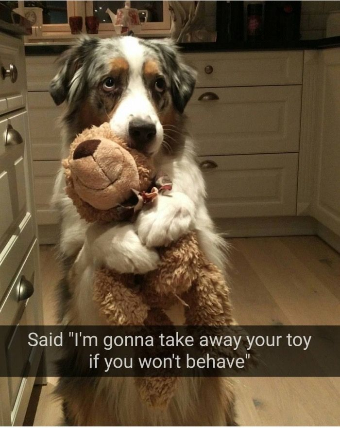 "Said ""I'm gonna take away your toy if you won't behave"""