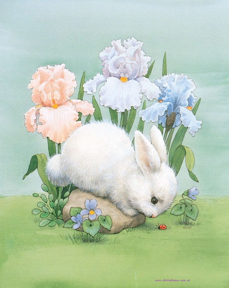 bunny and flowers - Conejos