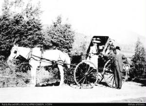 1880 the Porepunkah to Mt Buffalo coach sevice. No road up the mountain so most likely to theTemperance Hotel,