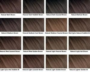 chocolate brown hair colour chart: The 25 best brown hair chart ideas on pinterest length of hair