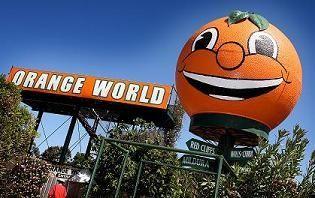 Have you been to Orange World? We sure have. #orangeworld #australia #milduradeakin