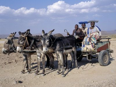 Herero Man and Two Women Ride Home in a Donkey Cart, Namibia