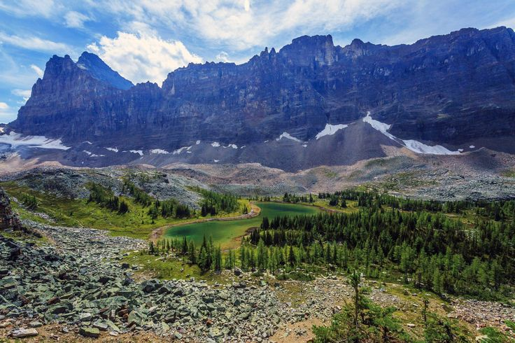 Banff National Park mountains trees landscape wallpaper | 5616x3744 | 529838 | WallpaperUP