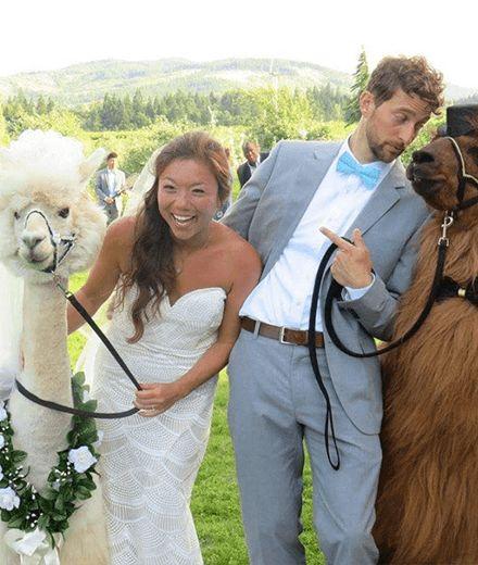 37 best Hochzeit Hochzeitsgast images on Pinterest