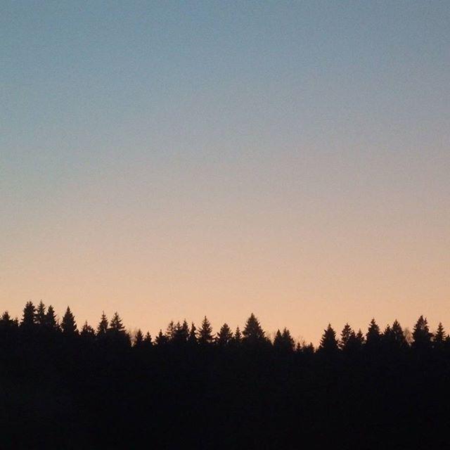 #видизокна #горизонт #природа #закат #зима #viewfrommywindow #winter #nature #sunset