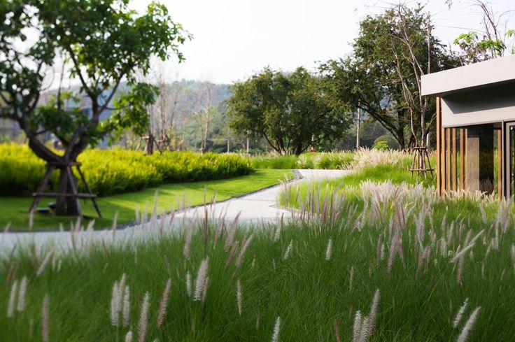 Meadow   Modern   Garden