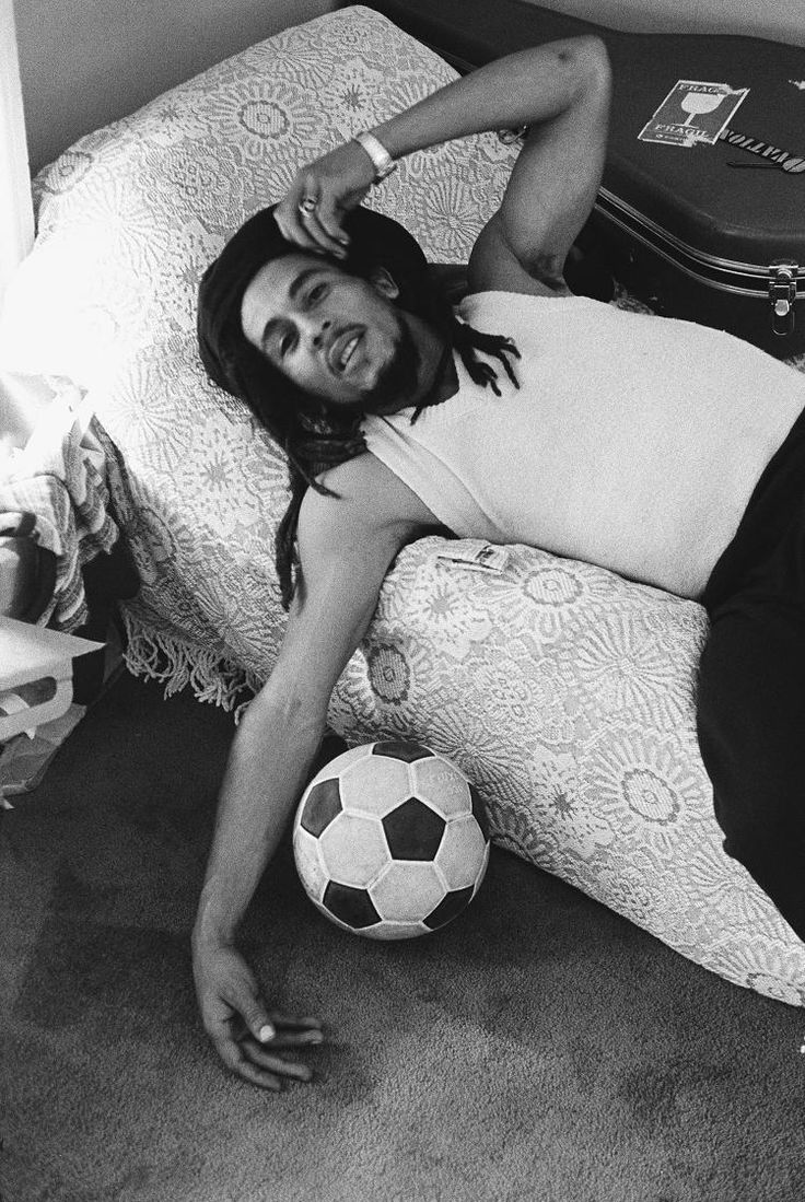 62 best images about marley family on pinterest