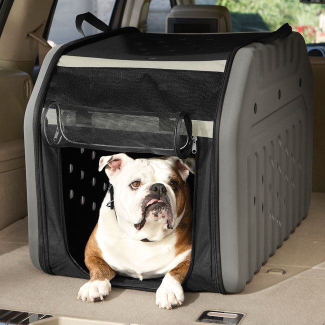 Portable Travel Crate -- An ideal dog crate for car trips, this lightweight travel crate packs up slim when not in use and sets up easily.