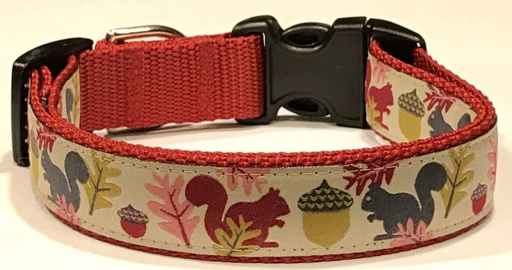 Dog Collar: Squirrels and Acorns Jessica Jones Ribbon Adjustable Dog Collar/Leashes, Pet Supplies, Nature/Rustic Gift, Veterinary Gift by TwistnShoutDesigns on Etsy