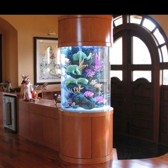 1000 images about rooms aquarium on pinterest fish aquariums home aquarium and best fish tanks - Decorative fish tanks for living rooms ...