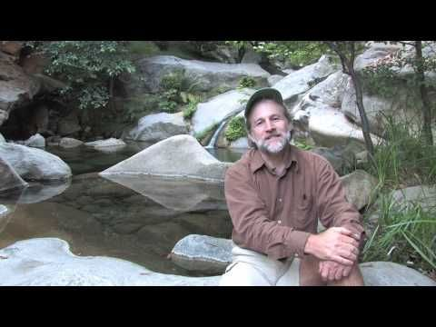 Laundry to Landscape Greywater System-Original Complete Info / video snippet including mulch basins