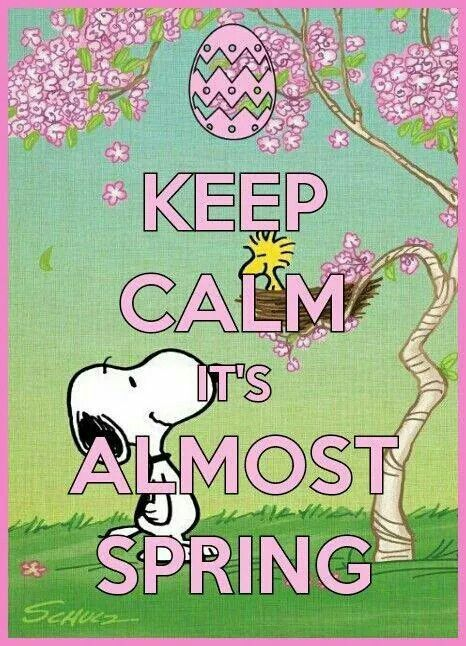 Snoopy Standing Below a Pink Tree With Woodstock in His Nest With Spring Flowers and an Easter Egg With Caption - Keep Calm - It's Almost Spring