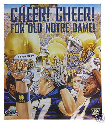 1360 best notre dame football images on pinterest notre dame notre dame fighting irish football fandeluxe Ebook collections