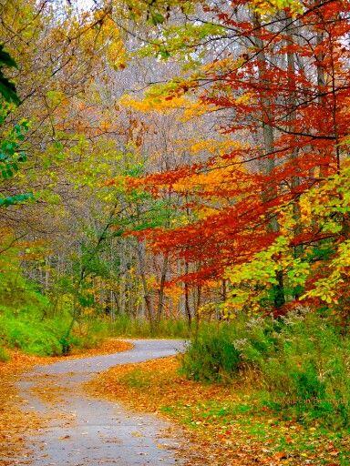 가보고 싶은 장소에 있는 한엄마님의 핀  Pinterest  가을, 조경 및 ...