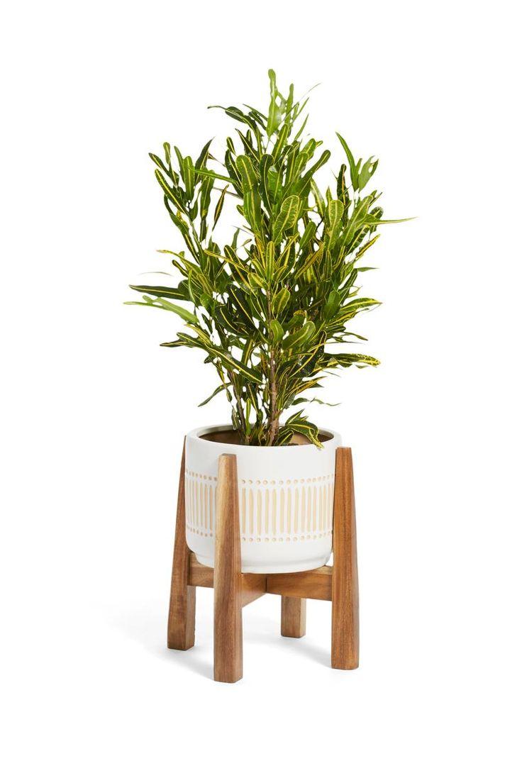 best 20 wooden plant stands ideas on pinterest wooden. Black Bedroom Furniture Sets. Home Design Ideas