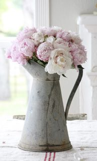 Faded grey enamel jug and the softest pink roses
