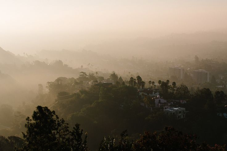 Looking out over Los Feliz from Griffith Park, the best place find nature in the city