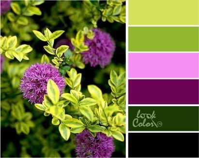 Сочетание цветов зеленый. Шартрез
