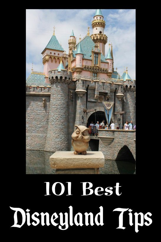 Check out this list of 101 Disneyland Tips. There are a lot of things on this list I didn't know!