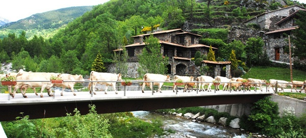 Setcases, Catalan Pyrenees   Setcases, Pirineo catalán   Setcases, Pirineu…