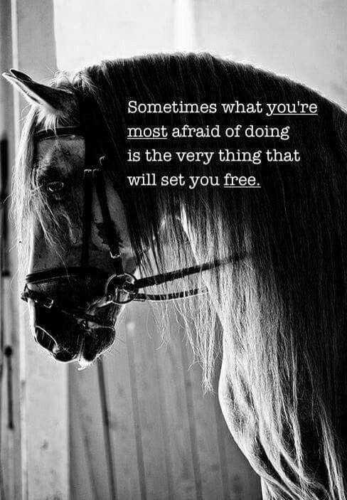 Sometimes what you're most afraid of doing is the very thing that will set you free  _A volte ciò che hai paura di fare è la cosa che ti renderà libero_