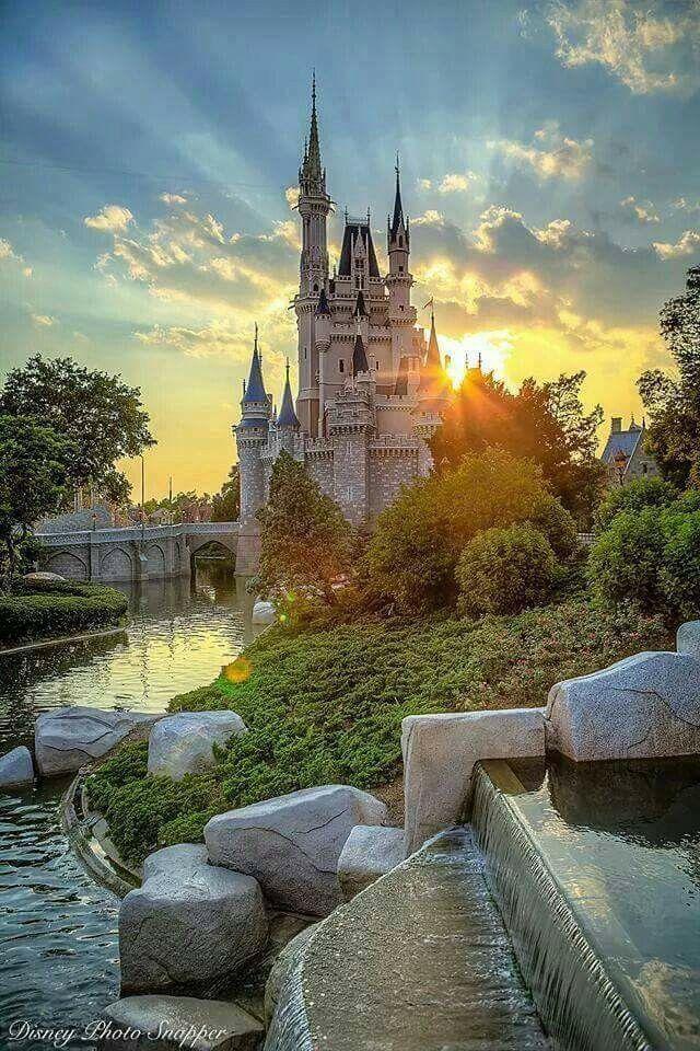 Walt Disney -Florida!